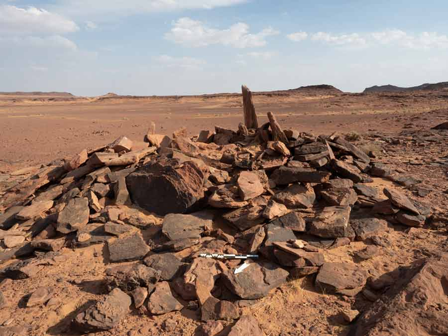 Pet dog buried 6,000 years ago
