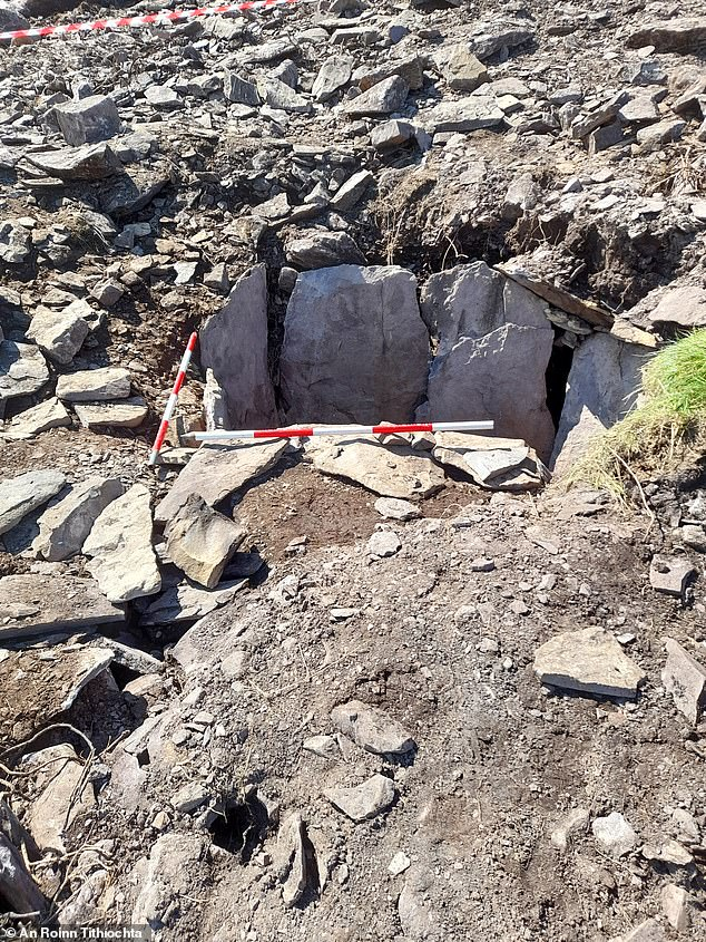 Tomb hidden in Ireland