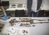Grave Of Thrones: Ancient Tomb Of Child Princess Found In Game Palace