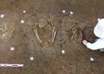 Discovery Of 113 Ancient Taino Graves In Guadeloupe Sheds Light On A Lost People