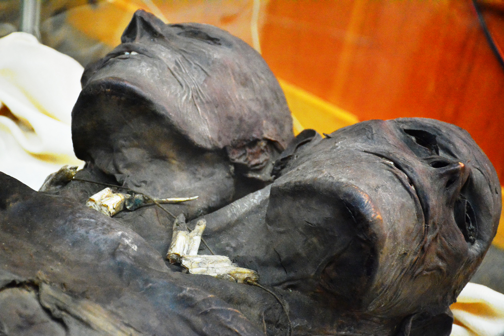 Kap Dwa: The mysterious mummy of a two-headed giant