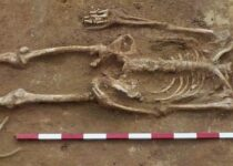 Decapitated Skeletons, with Heads Between Their Legs, Unearthed in Roman Cemetery