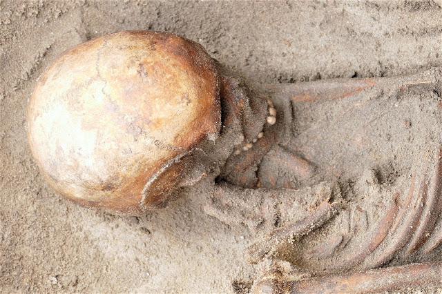 Iron Age and Roman Skeletons Discovered on Alderney
