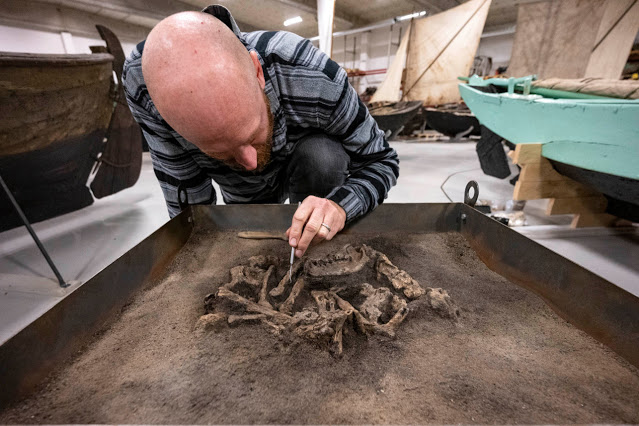 Faithful 8,400-year-old dog found buried with his master in Sweden