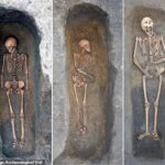 Medieval plague victims were buried individually with 'considerable care', new analysis of teeth reveals