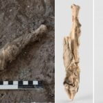 Researchers sequenced the DNA 1,600-year-old sheep mummy from an ancient Iranian salt mine, Chehrabad