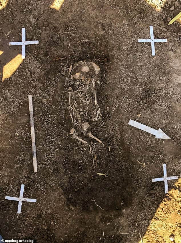 twin infant Vikings discovered in Sweden