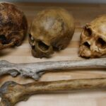 Climate change altered the size of human bodies  altered the size of human bodies