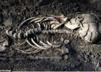 Skeletons of twin infant Vikings discovered in Sweden