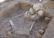 12,000-year-old village discovered in Jordan Valley