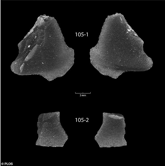 Underwater Archaeology Team Finds 9,000-Year-Old Stone Tool Artifacts