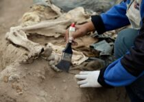 At ancient pyramid in Peru, remains of 20th century Chinese laborers found