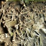 Men And Women Had Different Diets in This Ancient Roman Town Destroyed by a Volcano