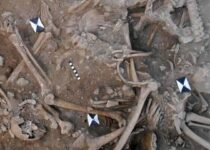 Mass graves of Crusaders killed in the 13th century have been discovered in Lebanon