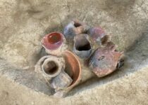 Early evidence for beer drinking in a 9000-year-old platform mound in southern China
