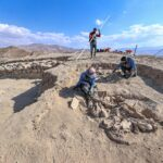 Animals buried with Urartian master in rare grave at ancient site in Turkey